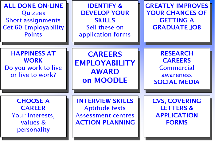 The University Of Kent Careers Employability Award