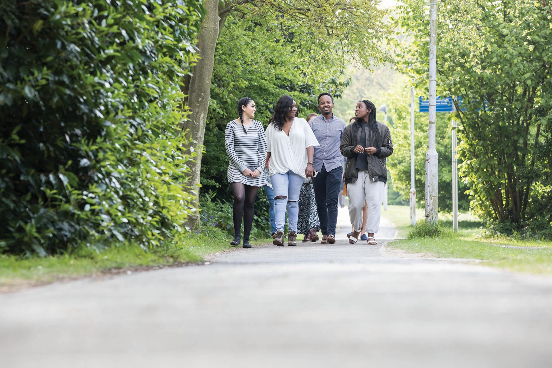 Group of young people walk on a tree-lined path