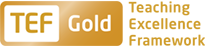 University of Kent TEF Gold Award logo